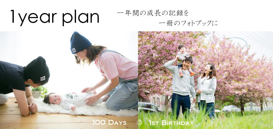 1 year plan